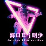 海口DJ明少-2020年全中文House90后流行音乐(孤芳自赏)私人订制车载串烧