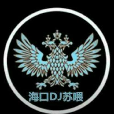 林俊杰 - 爱你(dj贺仔 Mix)Dj苏喂改_bpm132